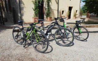 gite-in-bicicletta